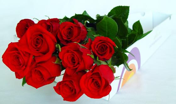 6. SÎLA - Puterea destinului - comentarii - Pagina 4 Ramo-de-rosas-rojas